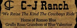 C-J Ranch ~ We Raise The Kind The Cowboys Ride ~ Standing Romeo Blue, Grullo Roan Quarter Horse Stallion Son of Plenty Try and Out of a Blue Valentine Mare in Randlett, Oklahoma